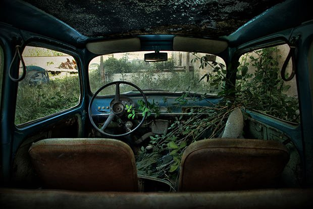 Portraits Of Abandoned Cars Taken From The Back Seat