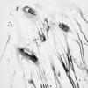 "At first glance, photographer.   ""Silver Print "" series of portraits might look like ink paintings or some kind of CG..."