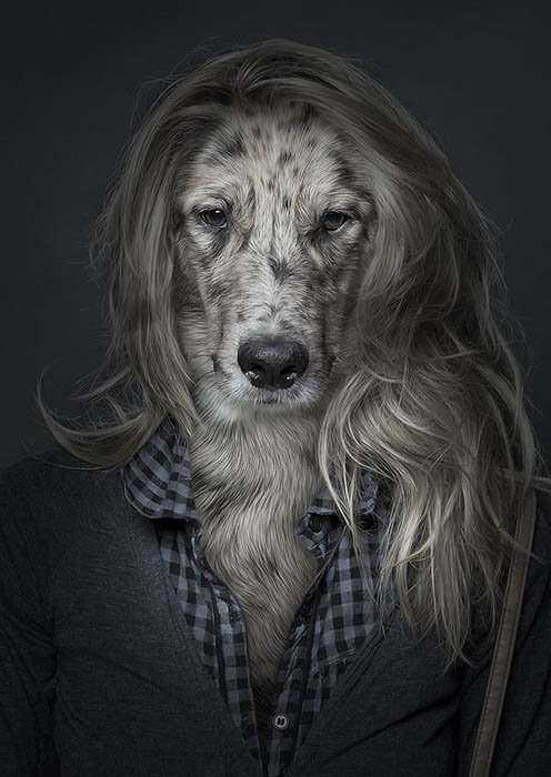 The Faces of Dogs Combined with the Bodies of Their Owners 0a33313fbc51b9e18607a82af4d4bccf