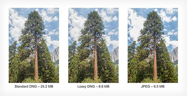 Adobe Expands DNG Specification to Include Lossy Compression lossdng