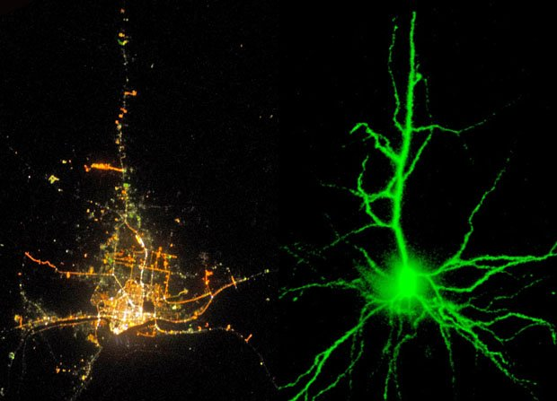 Photos Showing the Strange Similarities of Human Cities and Human Neurons citiesandneurons1