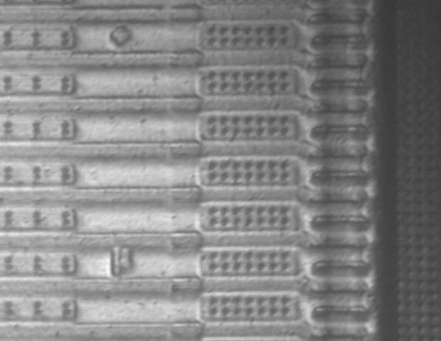 cmosmicrograph-5