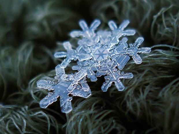 snowflake-2b