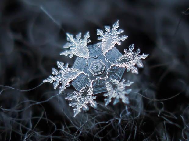snowflake dating app