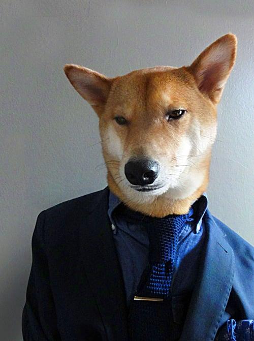 dogmenswear-1