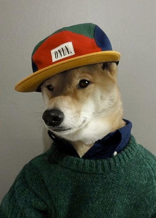 dogmenswear-5