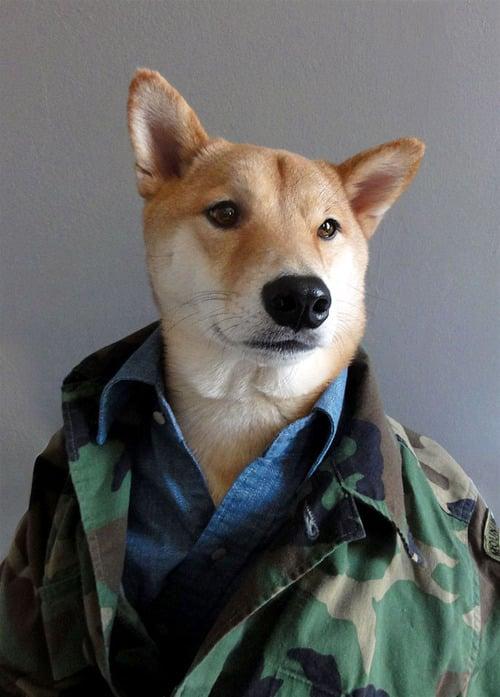 dogmenswear-6