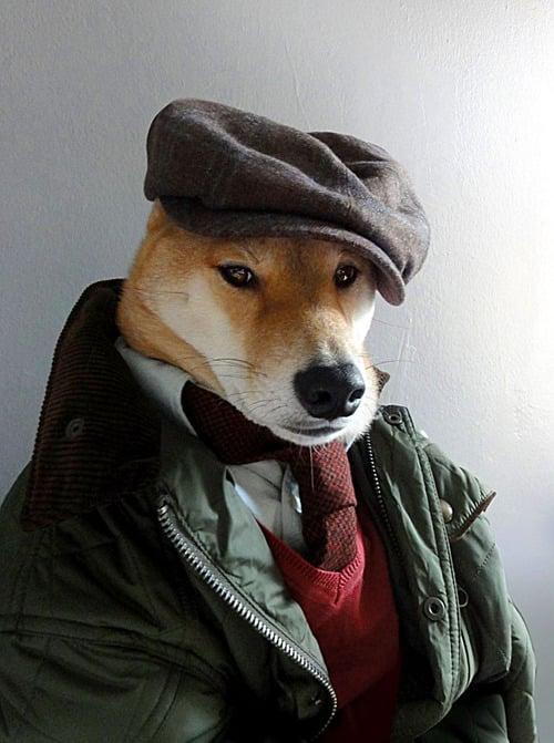 dogmenswear-7