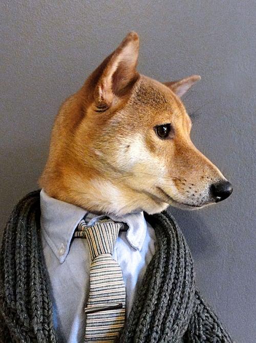 dogmenswear-9