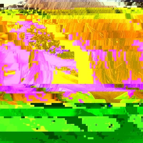 01-glitch