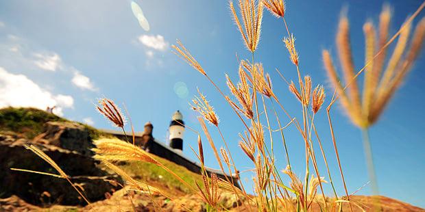 Alves_filho-barra-lighthouse (11)