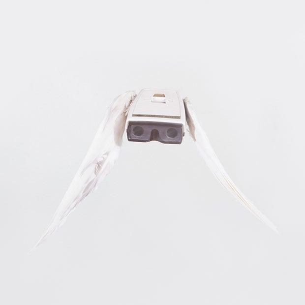 birds-10 copy