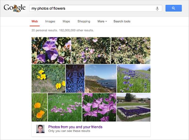 googleimagesearch1