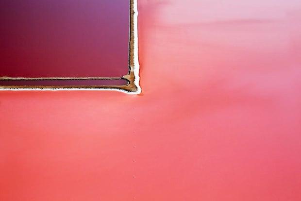 Undoctored Abstract Aerial Photos of the World's Largest Beta Carotene Farm huttlagoon3