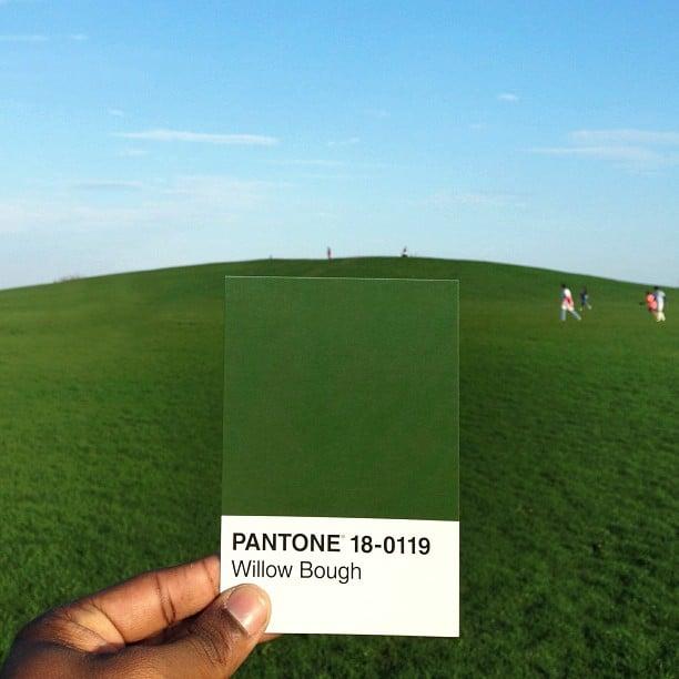 pantone9