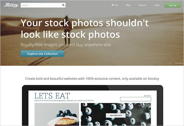 Stocksy United: A Photographer's Review