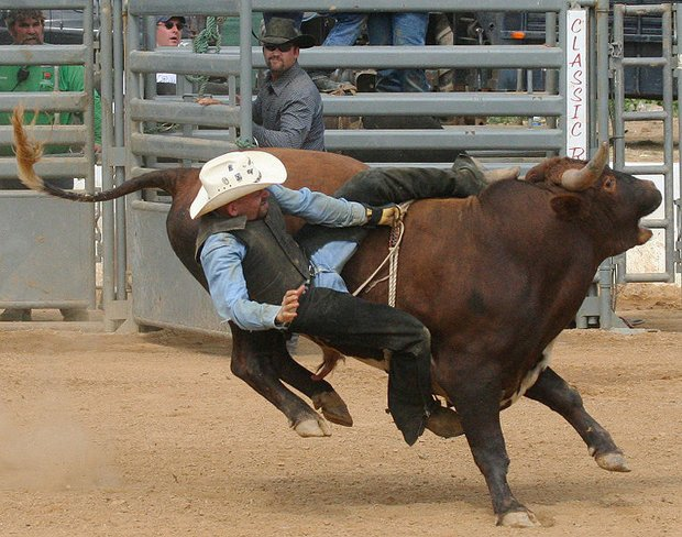 Rodeo Bans Professional Quot Slr Cameras A Swipe At Animal