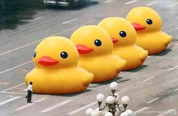 duckytankman