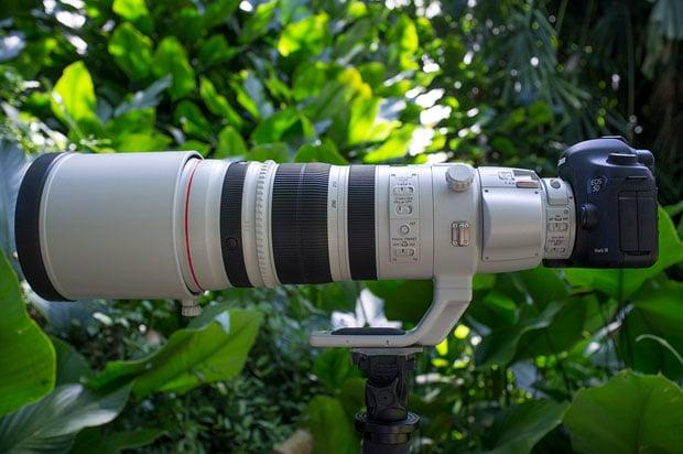 lens pic copy