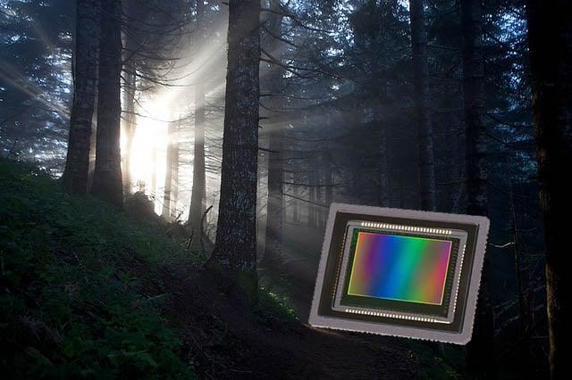 sensorlight