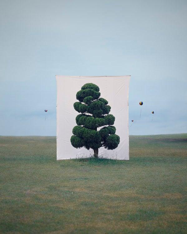 Tree #2, 2006
