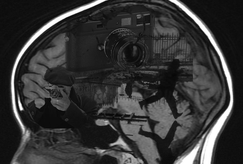 The Decisive Moment and the Brain