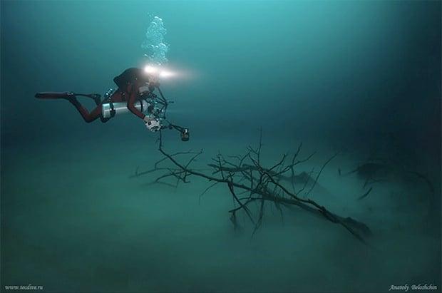 Mesmerizing Photos of Cenote Angelita, an Underwater River