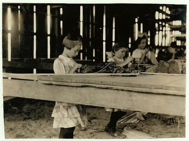 Interior of tobacco shed, Hawthorn Farm. Girls in foreground are 8, 9, and 10 years old. The 10 yr. old makes 50 cents a day. 12 workers on this farm are 8 to 14 years old, and about 15 are over 15 yrs. Location: Hazardville, Connecticut.