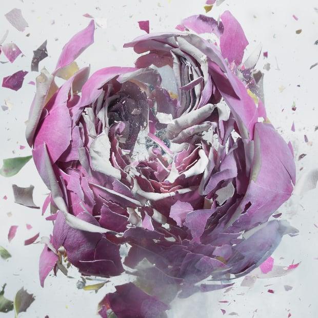 explodingflowers5