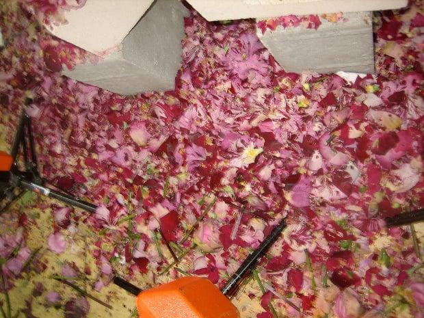 explodingflowersbts3
