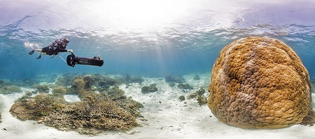 Beautiful Underwater Panoramas are Being Used to Help Scientists Save Coral Reefs