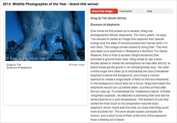wildlifephotographer2