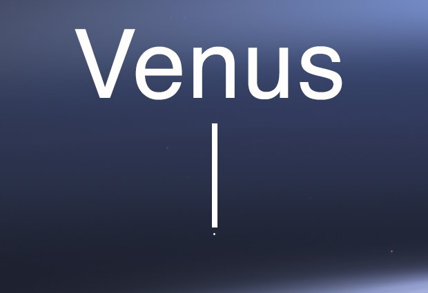 cassinivenus