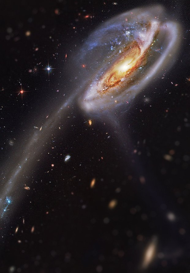 Tadpole Galaxy Original image & credit: Image produced with the HST data from the Hubble Legacy Archives. Processed by Bill Snyder http://billsnyderastrophotography.com/?page_id=2464