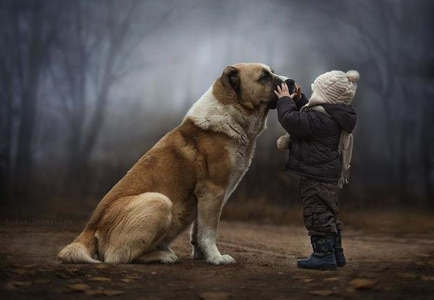 Russian Mother Takes Magical Portraits of Her Two Boys and their Animal Friends