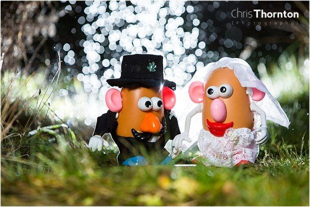 A Dad's Labor of Love: Beautiful Wedding Photos of Mr. and Mrs. Potato Head