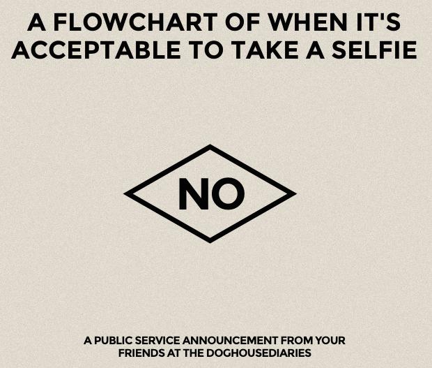 selfieflowchart