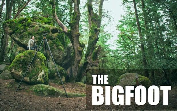Bigfoot image copy