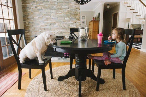 Adorable Photos Document the Growth of a Little Girl and Her Four-Legged Sibling