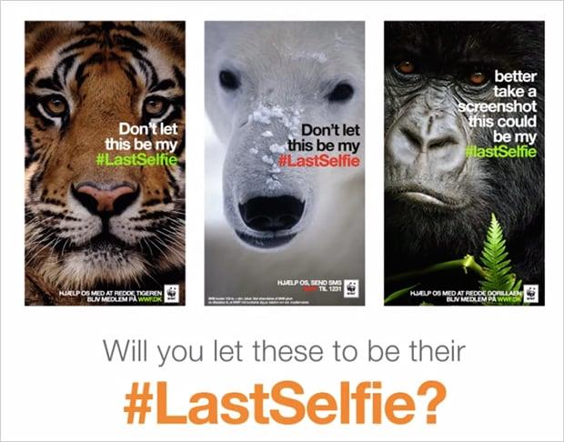 WWFlastselfie