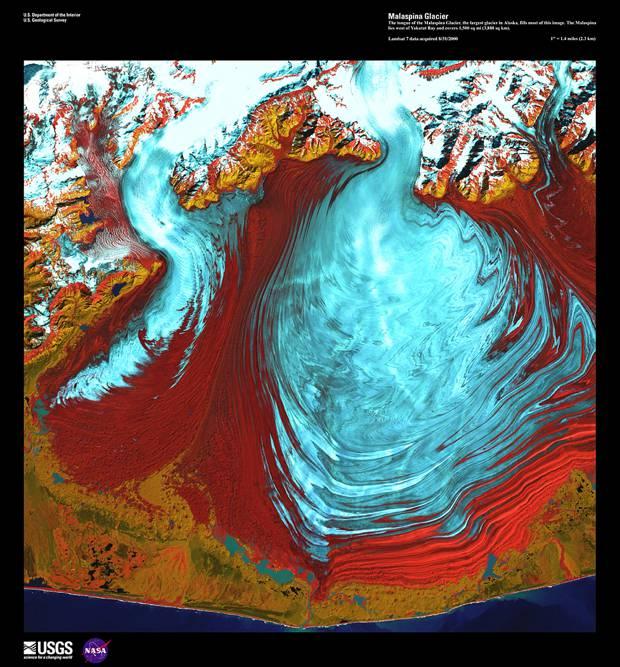 Malaspina Glacier, August 1st, 2000