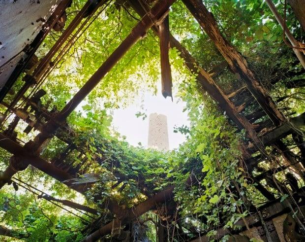 Boilerplant Roof Interior, North Brother Island, New York