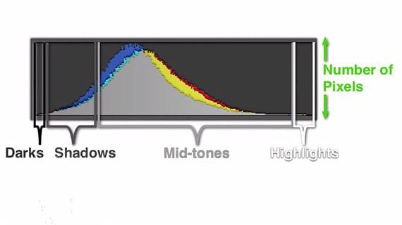 Back to Basics: Your Camera's Histogram Explained