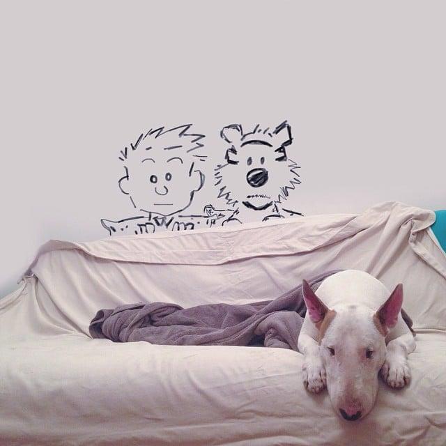 Artist Photographs His Adorable Bull Terrier Jimmy In Creative - Bull terrier art