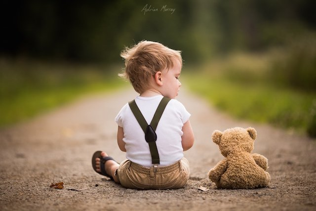 A Father's Touching Photos of His Two Sons and Their Teddy Bear