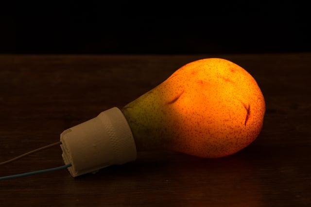 PP Pear light bulb