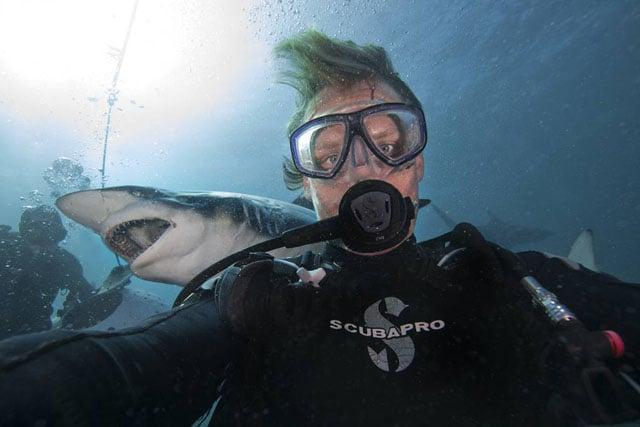 sharkselfie3