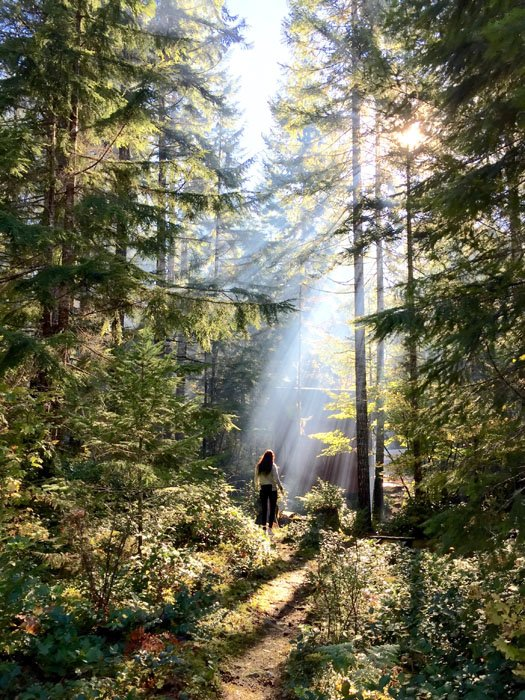 Shot by Cory S. in Lake Cushman, WA. The presence of human subjects in a natural setting like this forest creates a more relatable sense of scale and emphasizes the height of other elements in the photo.