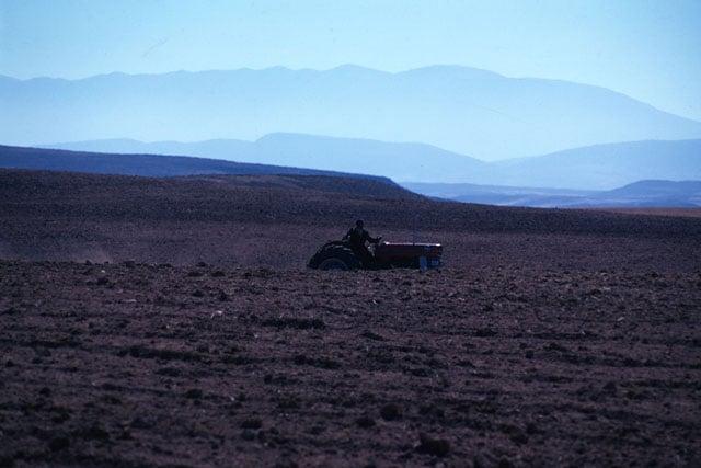 tractor_web