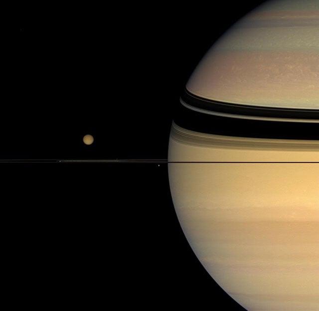 Four moons huddling around Saturn's rings. [#]
